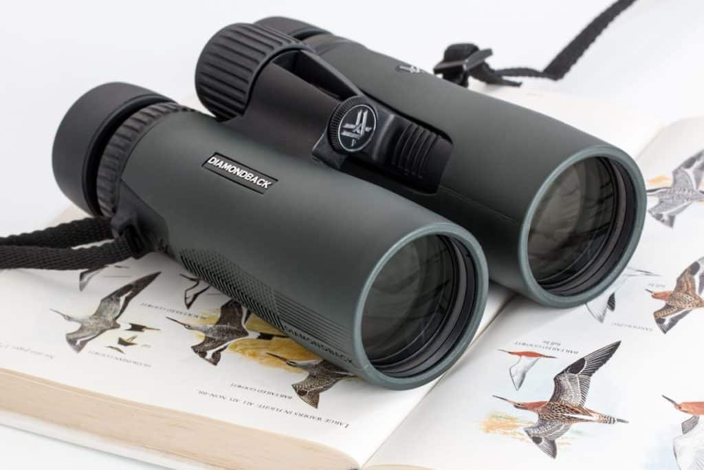 Find The Best Binoculars For Hunting